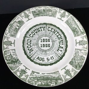 Wood County Wisconsin~Commemorative Plate~